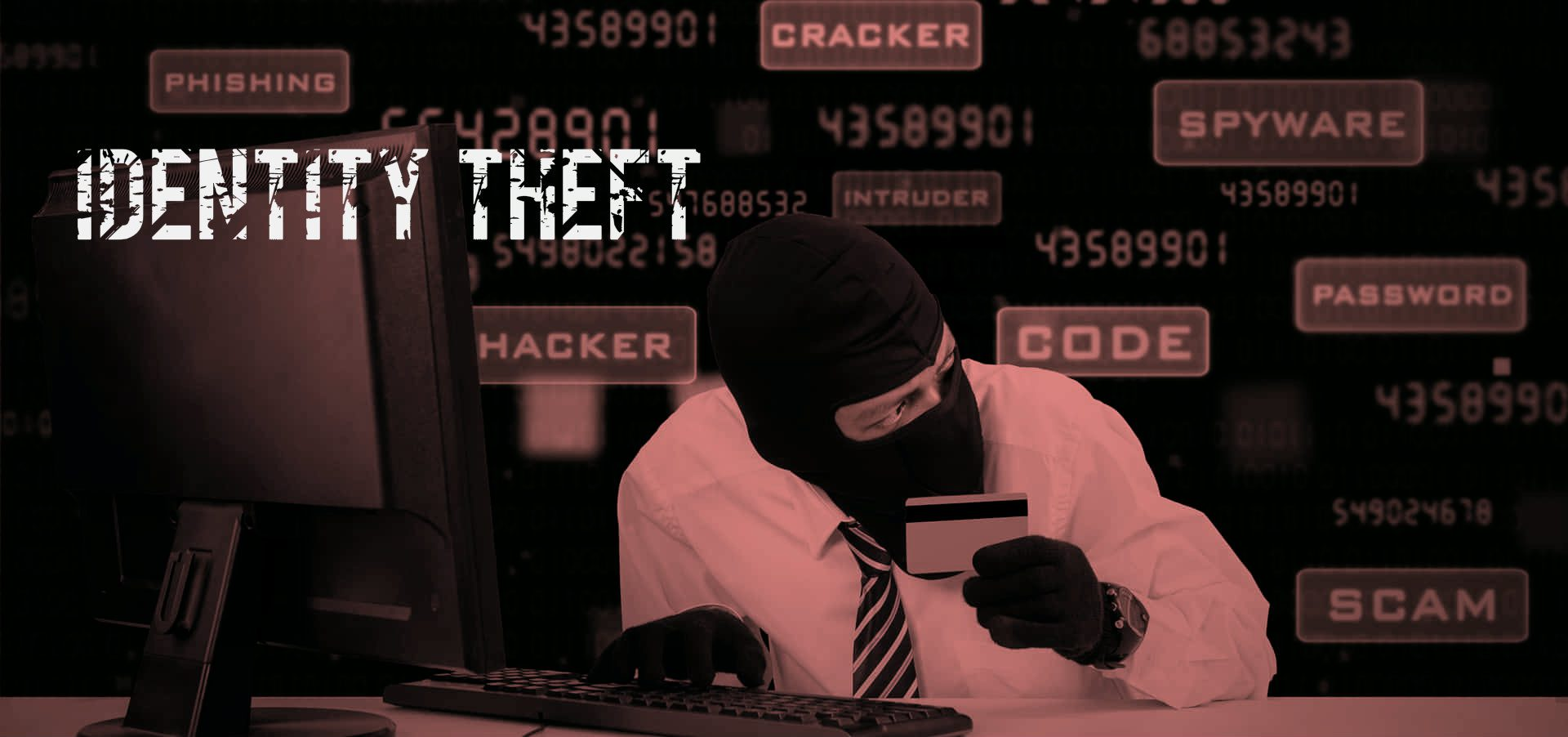 identity-theft-davinci